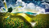 Украина 2025. Как мы развивались?